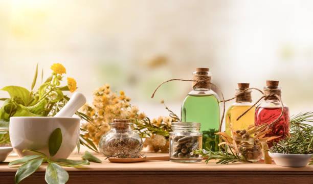 Emagrecer com plantas medicinais 4