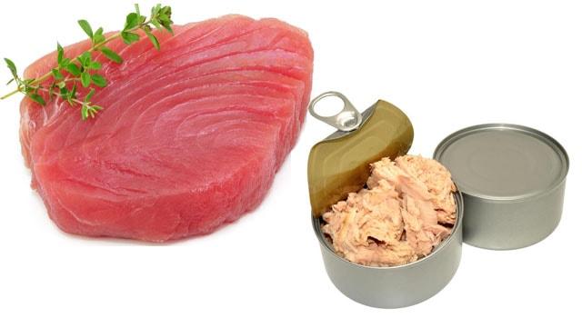 Benefícios do atum para a saúde 2