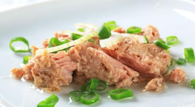 Benefícios do atum para a saúde 1