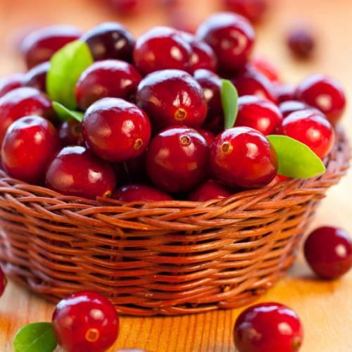 Arando vermelho beneficios - propriedades medicinais 1