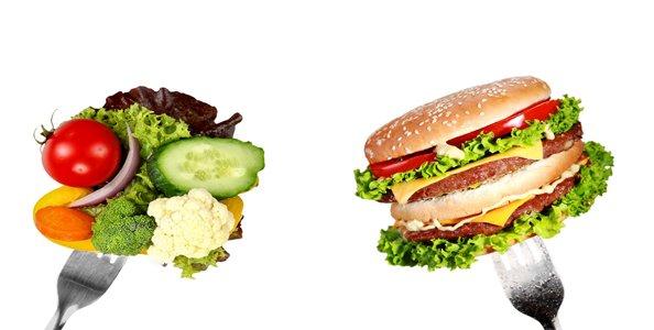A alimentação e o colesterol 1