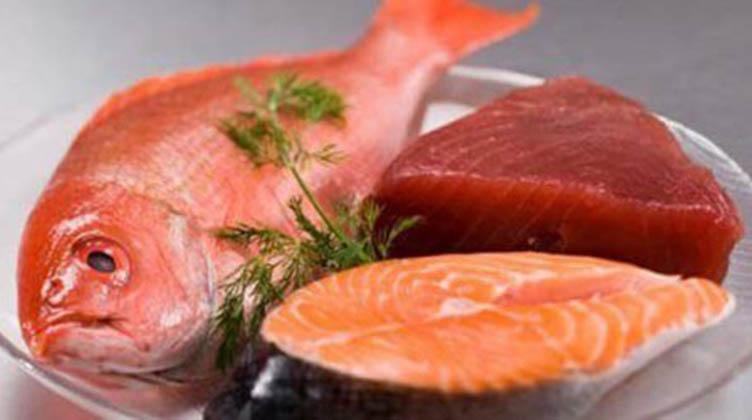 Os peixes e a quantidade de mercúrio 1