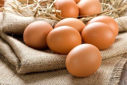 Cuidados a ter com os ovos 1