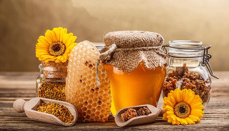Pólen de abelha - Fonte de Fibra