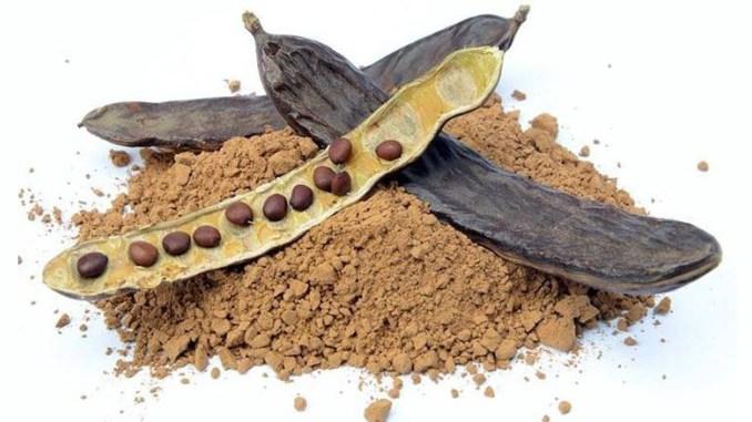 Alfarroba - a versão saudável do chocolate 1