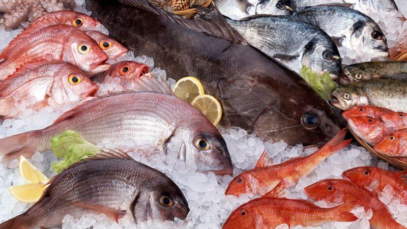 Os peixes mais saudaveis para a saude 1