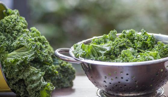 Couve Kale - o superalimento que todos deveríamos comer 1