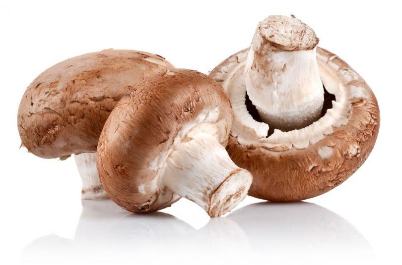 Cogumelos benefícios nutricionais e um super alimento 1