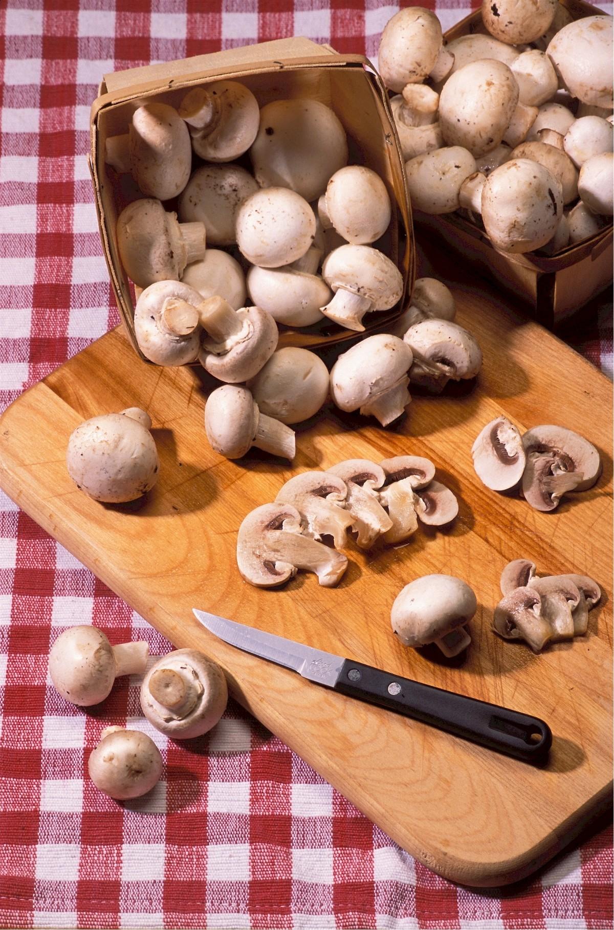Tarte de Alho Francês com Cogumelos e Bacon 2